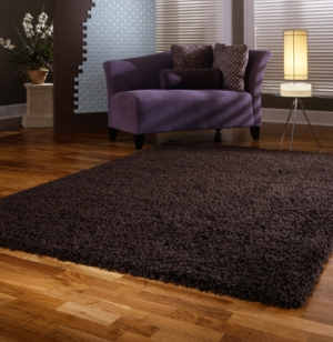 Area Rugs For Hardwood Floors Maria Clara S Blog
